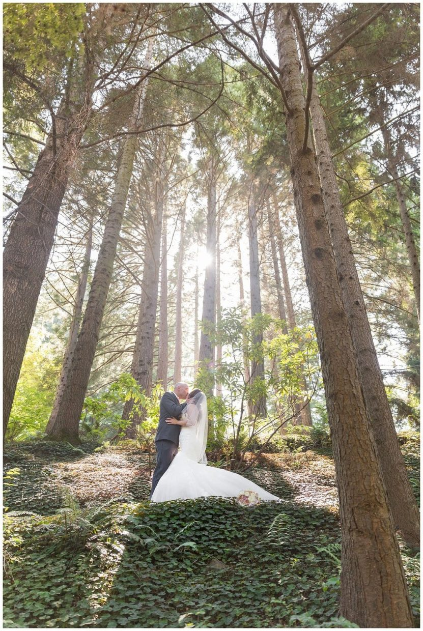 Couple standing in wedding attire in epic light and majestic trees