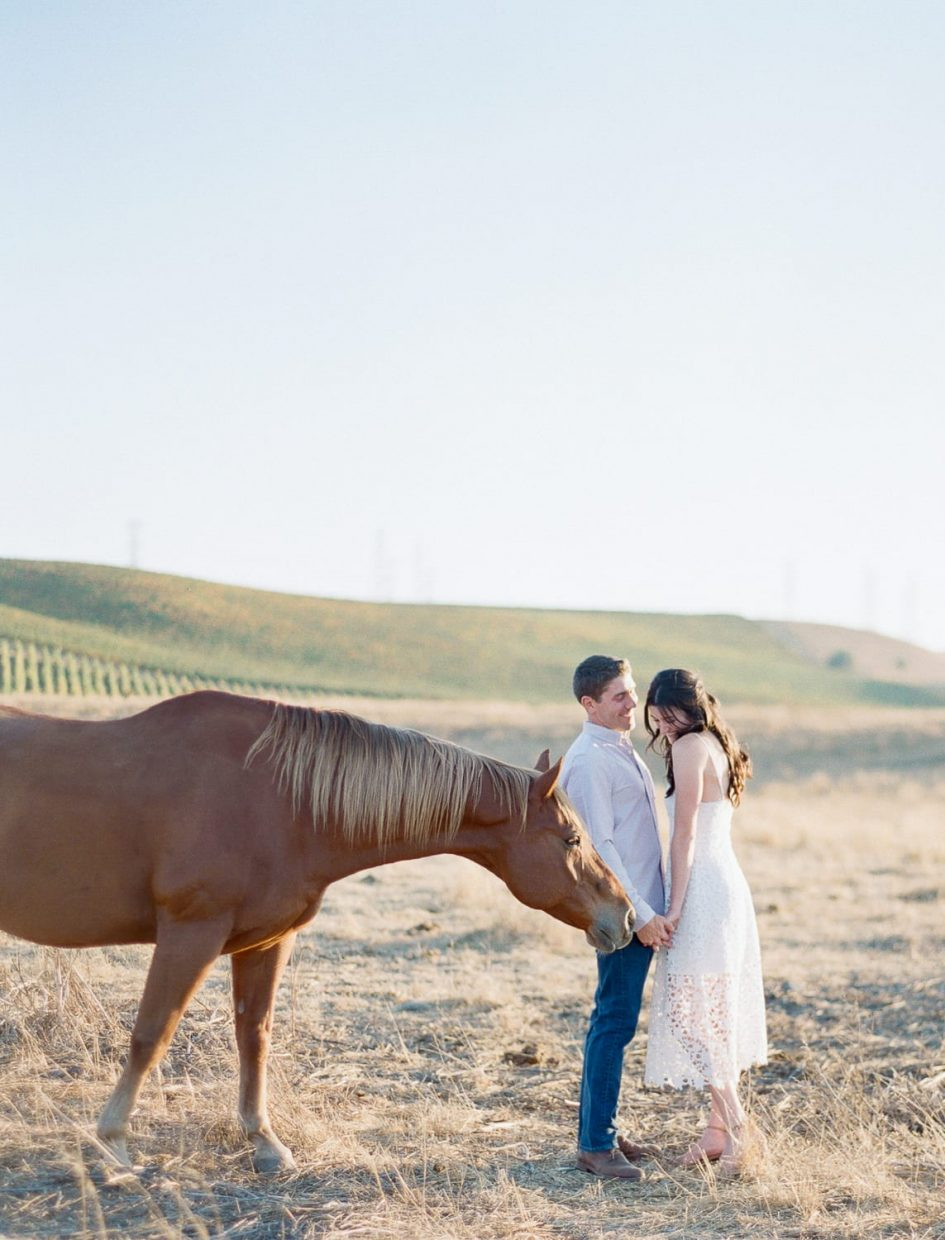 Wente Vineyards Engagement session in Livermore winery
