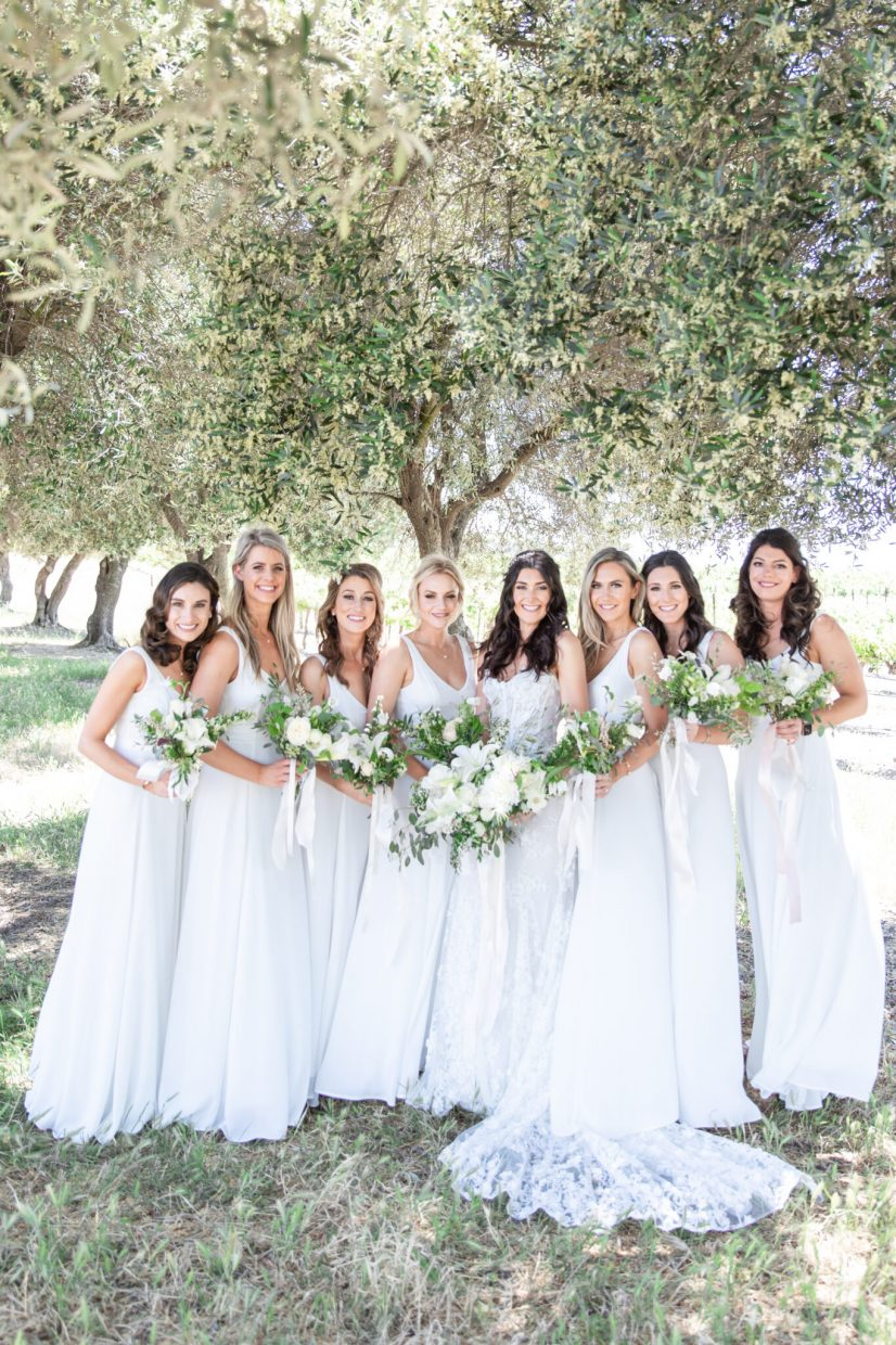 Bridal party photos in an olive grove