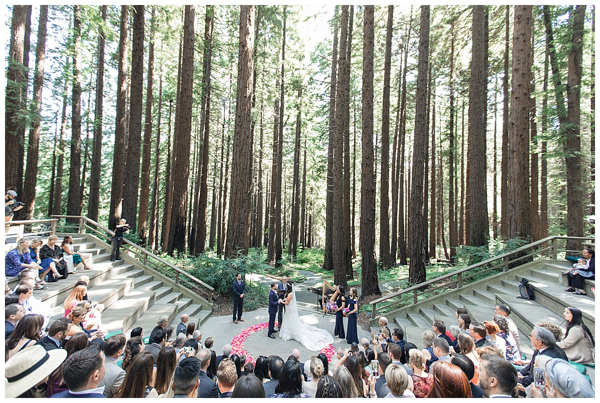 wedding ceremony at the Berkeley Botanical Gardens