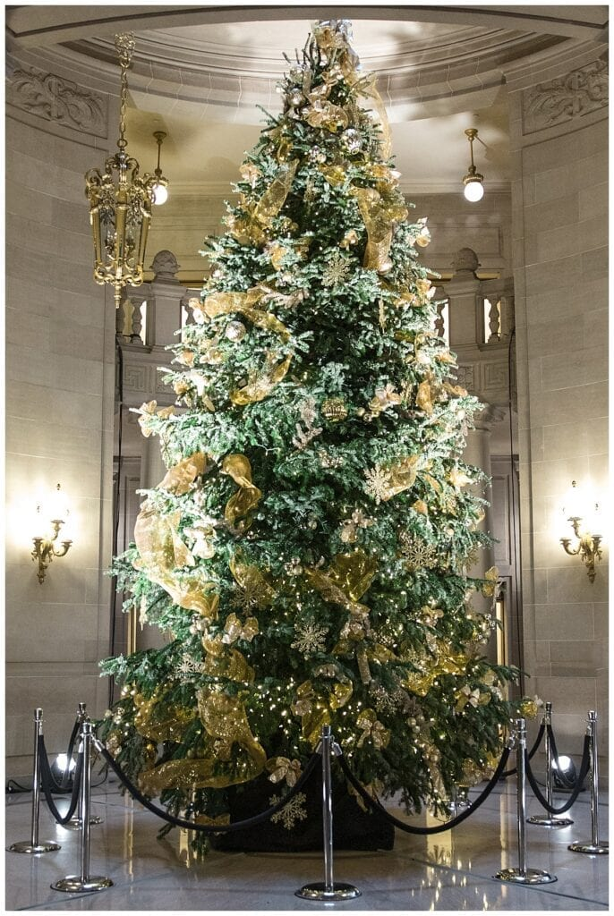 Christmas Tree City Hall 2019